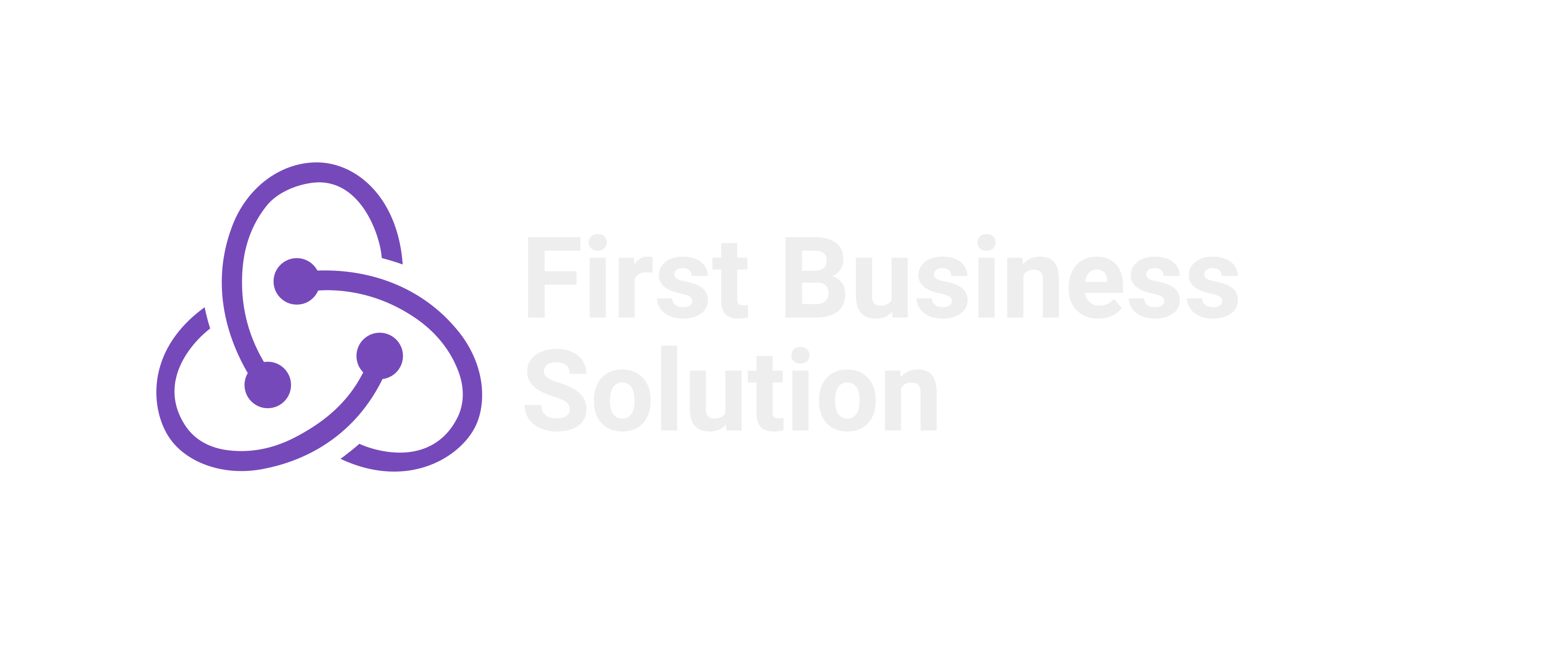 First Business Solution